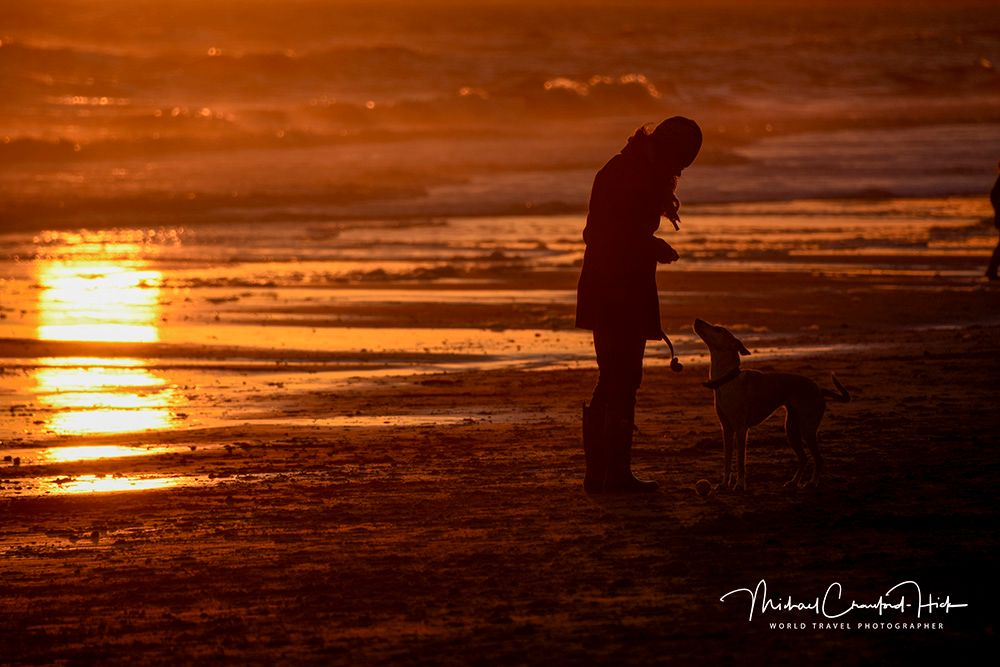 Photo in Sea and Sand #sunset #beach #dog #lady #waves