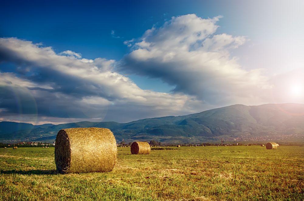 Photo in Nature #gold #bullion #field #light #grass #nature #emil toplaov #sun #straw