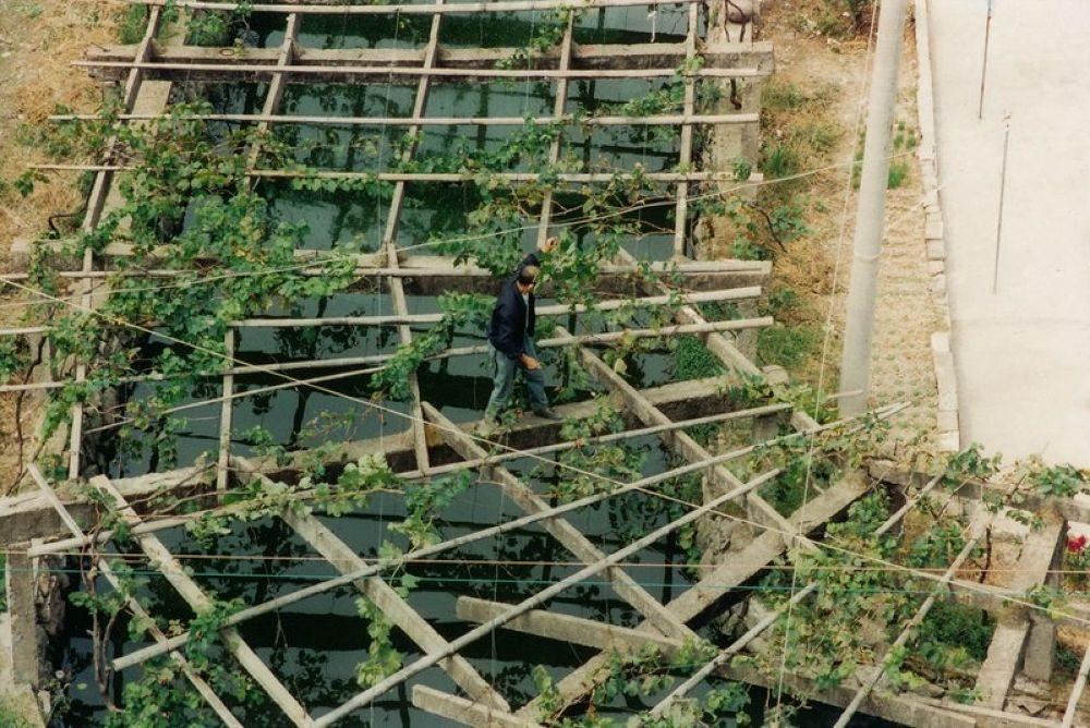 Photo in Random #zhejiang - tengtou village 199