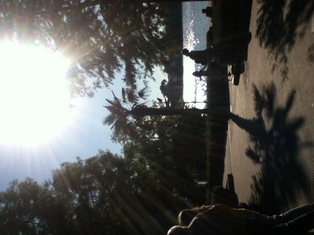 Photo in Random #summer #love #photography #sky #sun #landscaping