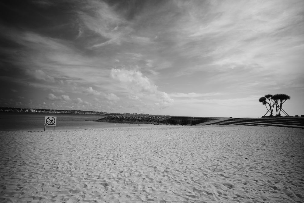 Photo in Random #beach #sky #tree #nature #black&white #monochrome #leica #sea #horizon #ocean #oceanscape #cloud #signboard