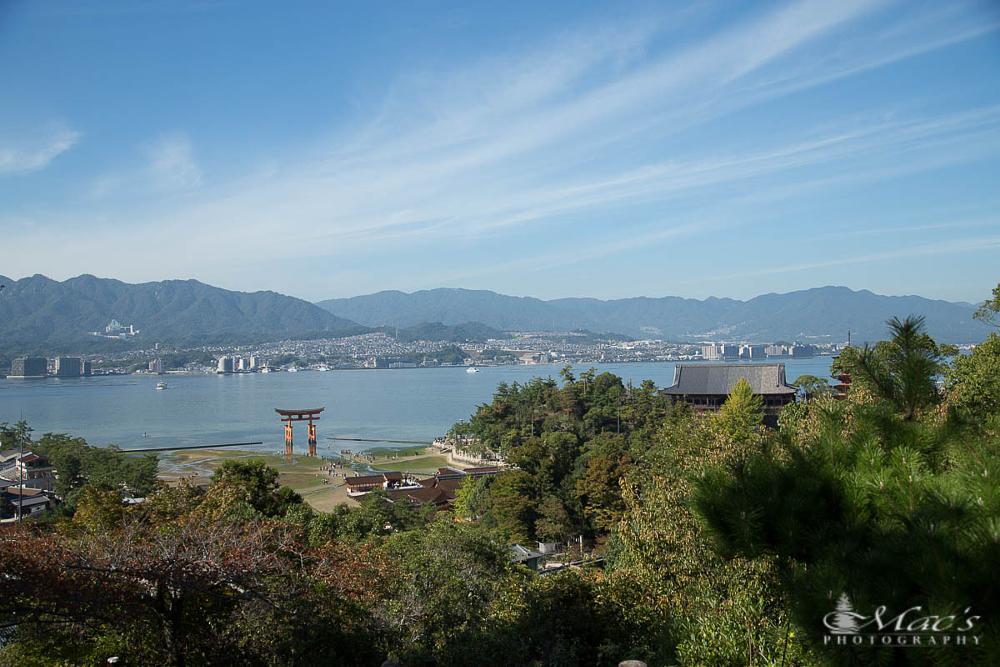 Photo in Landscape #shrine #japan #nippon #torii #landscape #canon #eos5d #markiii #canoneos5dmarkiii #macsphotography