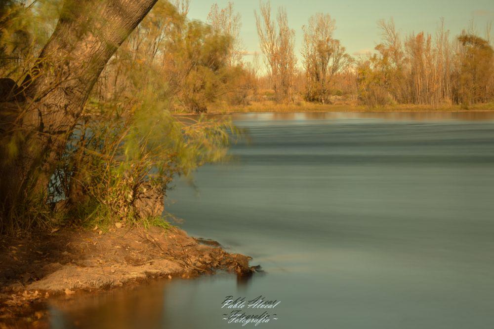 Photo in Random #long exposure