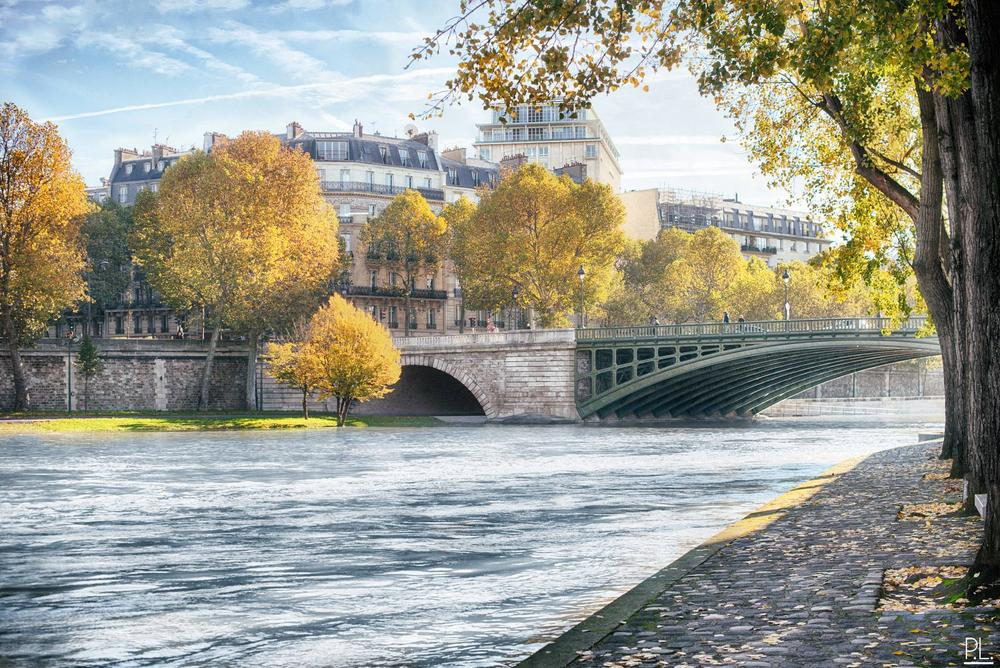 Photo in Cityscape #france #paris #ile de france #seine #water #sun #sunny #autumn #tree #light #beautiful #hdr #adobe #photoshop #lightroom #google #nik #nikon #d800 #50mm #f1.4