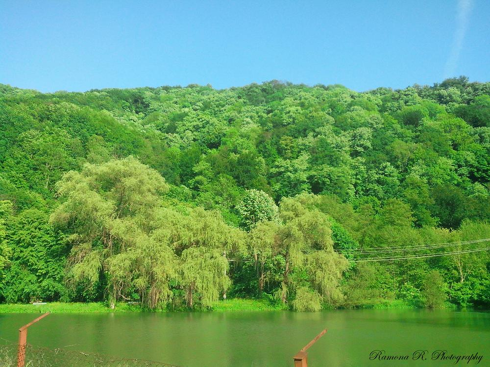 Photo in Nature #lake #spring #green #nature #blue sky