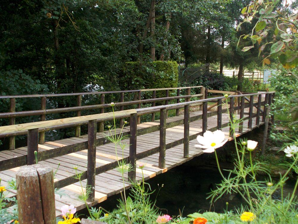Photo in Landscape #pont #bridge #bois #wood #nature #landscape