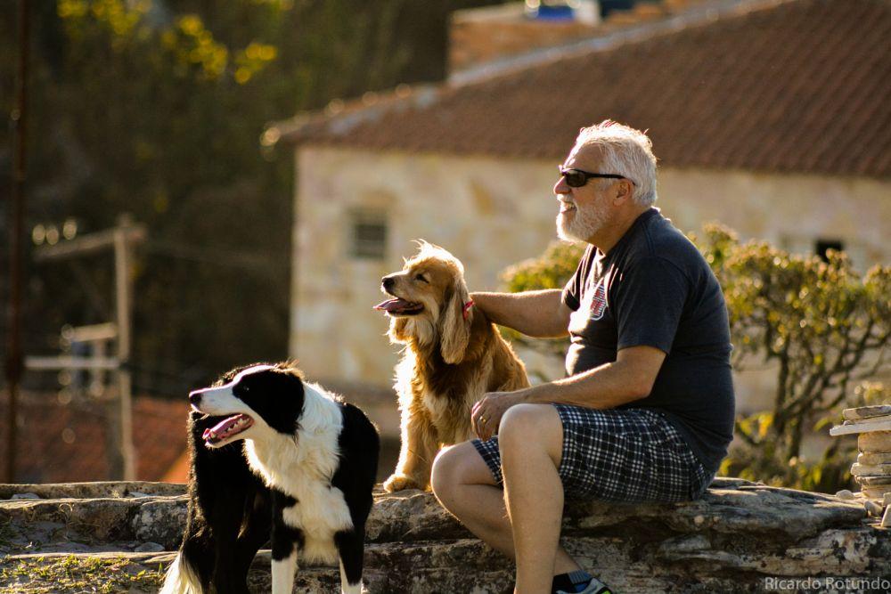 Photo in Animal #dog #animal #people #sunset #landscape #love #family