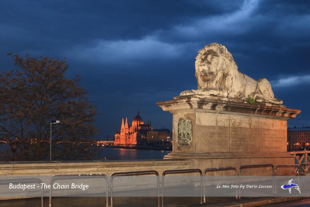 Photo in Cityscape #budapest #hungary #dario leccese