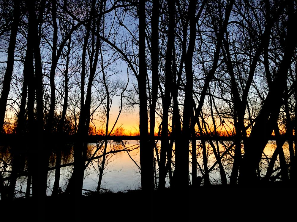 Photo in Landscape #sunset #zonsondergang #blauw #oranje #geel #bomen #trees #blue #orange #yellow #water #donker #dark