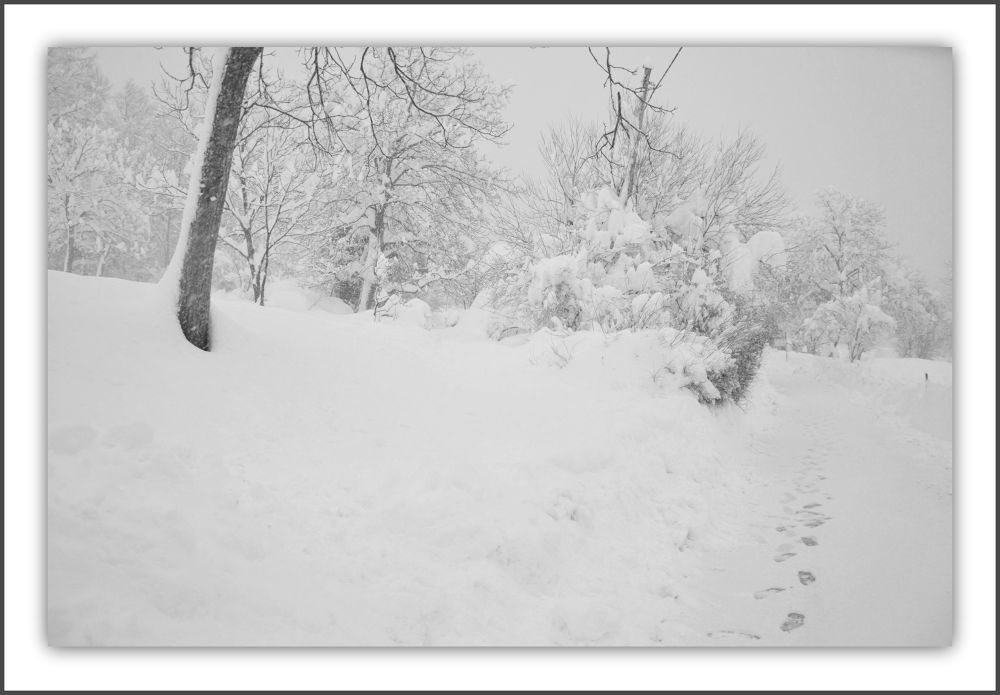 Photo in Landscape #winter #landscape
