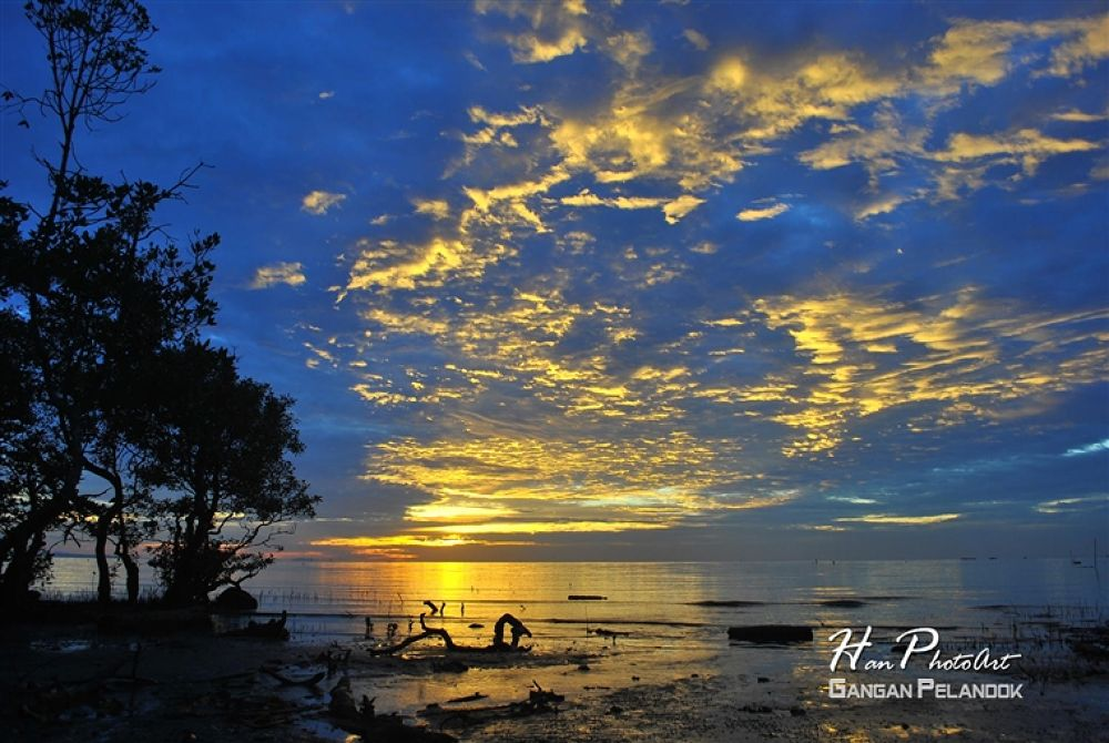 Photo in Random #- #air #pantai #saga #belitung