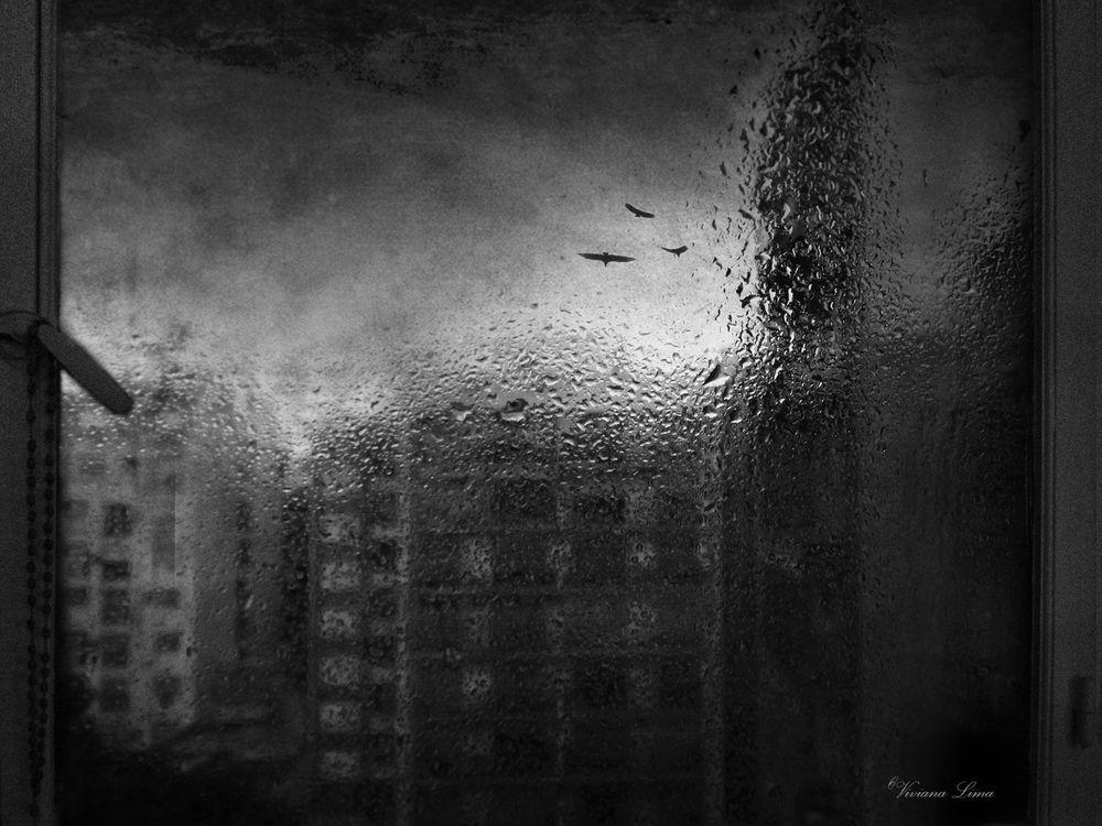 Photo in Random #ph #art #photography #amazing #monocromo #instagood