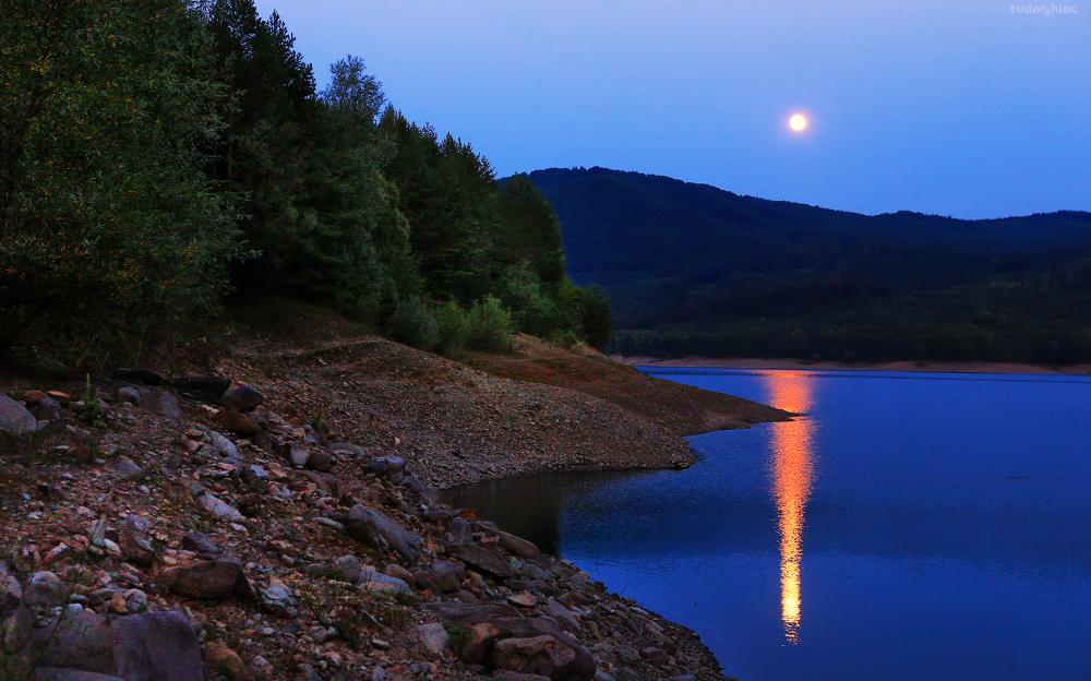 Photo in Random #sunset #full moon #landscape #water #lake #night