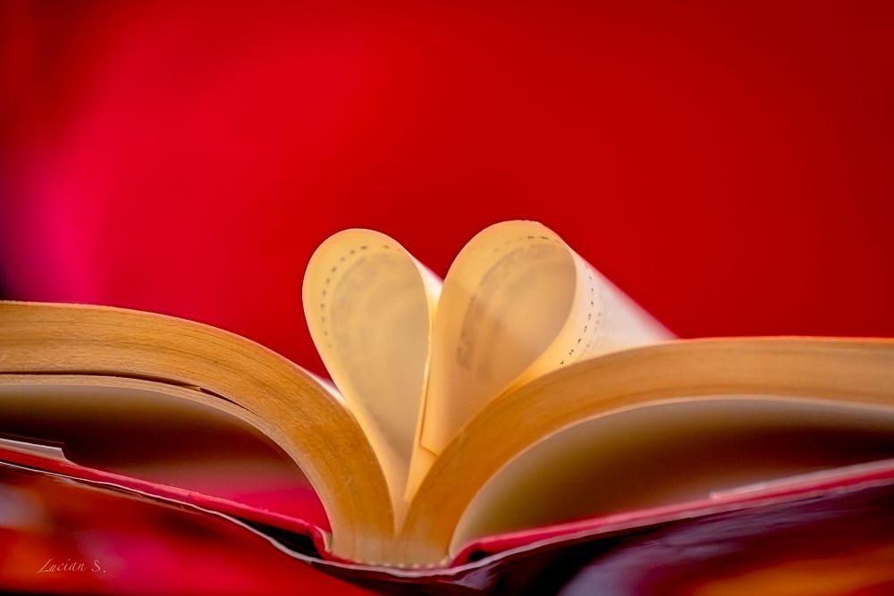 Photo in Fine Art #valentine's day #book #love #art #inspiration #creativity #heart