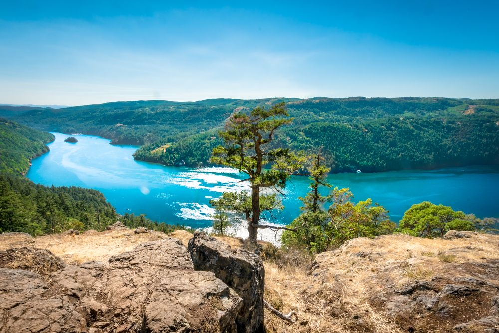Photo in Landscape #landscape #trees #water #high views