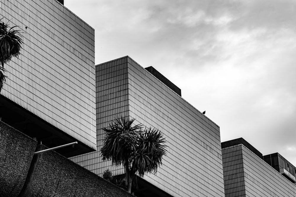 Photo in Random #blackandwhite architecture l