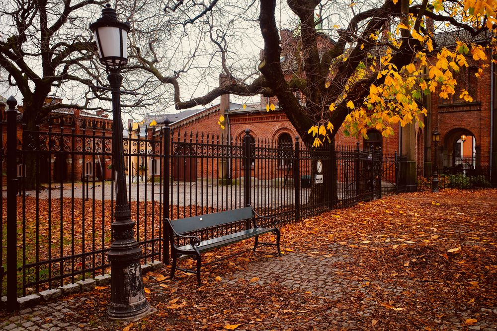 Photo in Cityscape #autumn #oslo #norway #høst