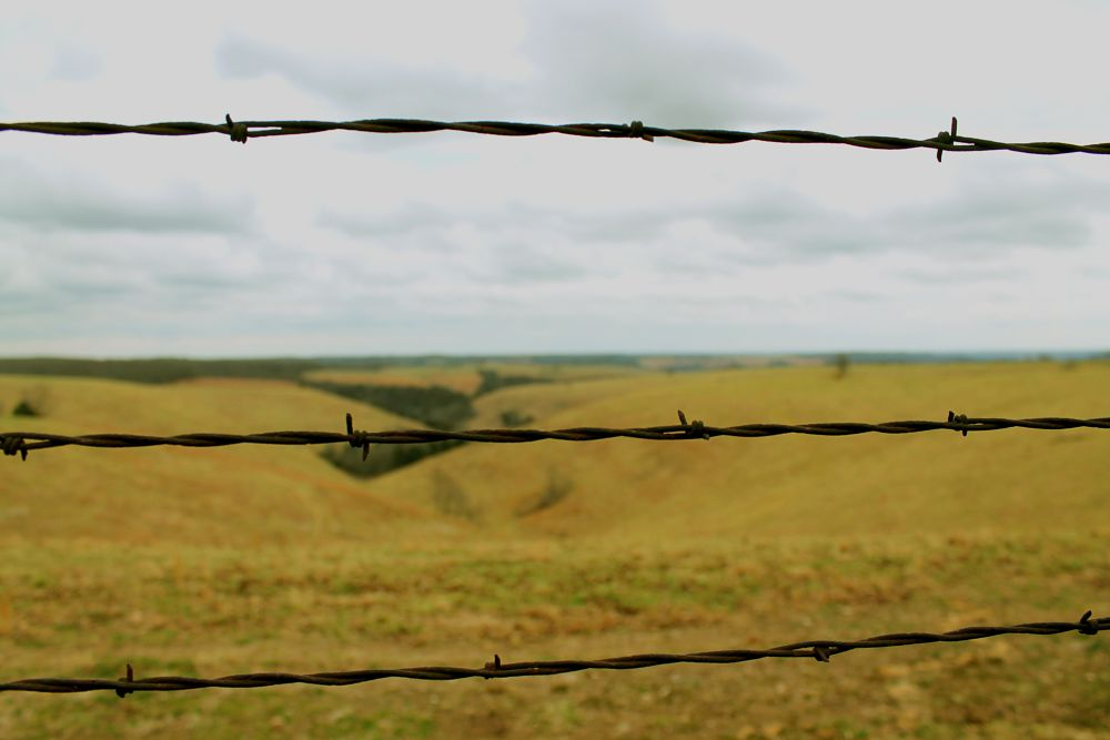 Photo in Rural #country #content #barbwire #sky #contrast #rural