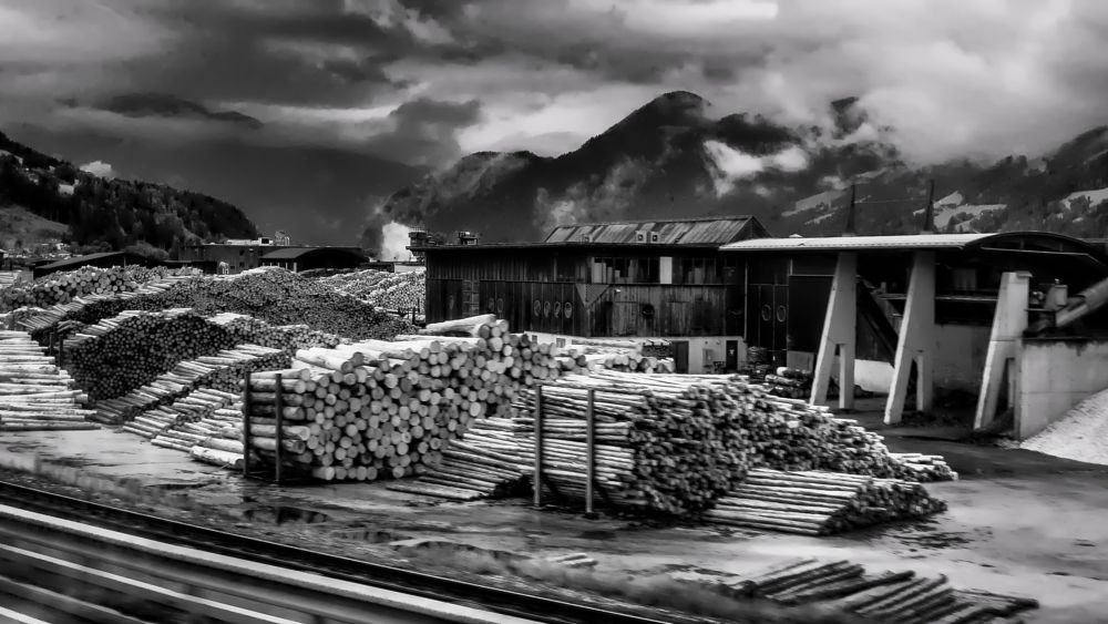 Photo in Landscape #wood #black and white #factory #trunks #austria