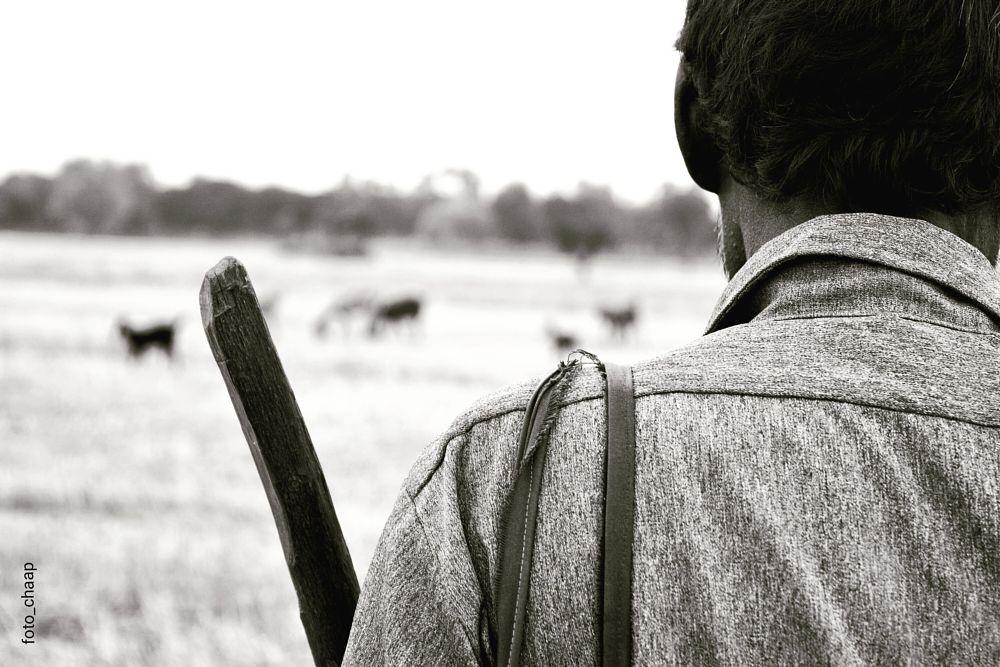 Photo in Black and White #shepherd #blackandwhite