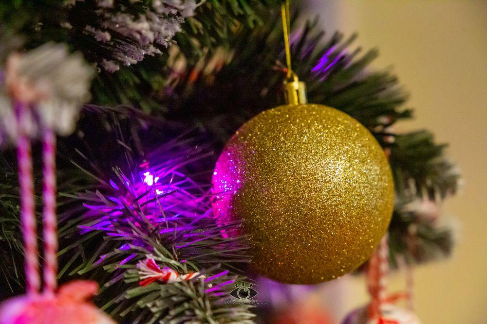 Photo in Random #xmas #christmas #light #tree