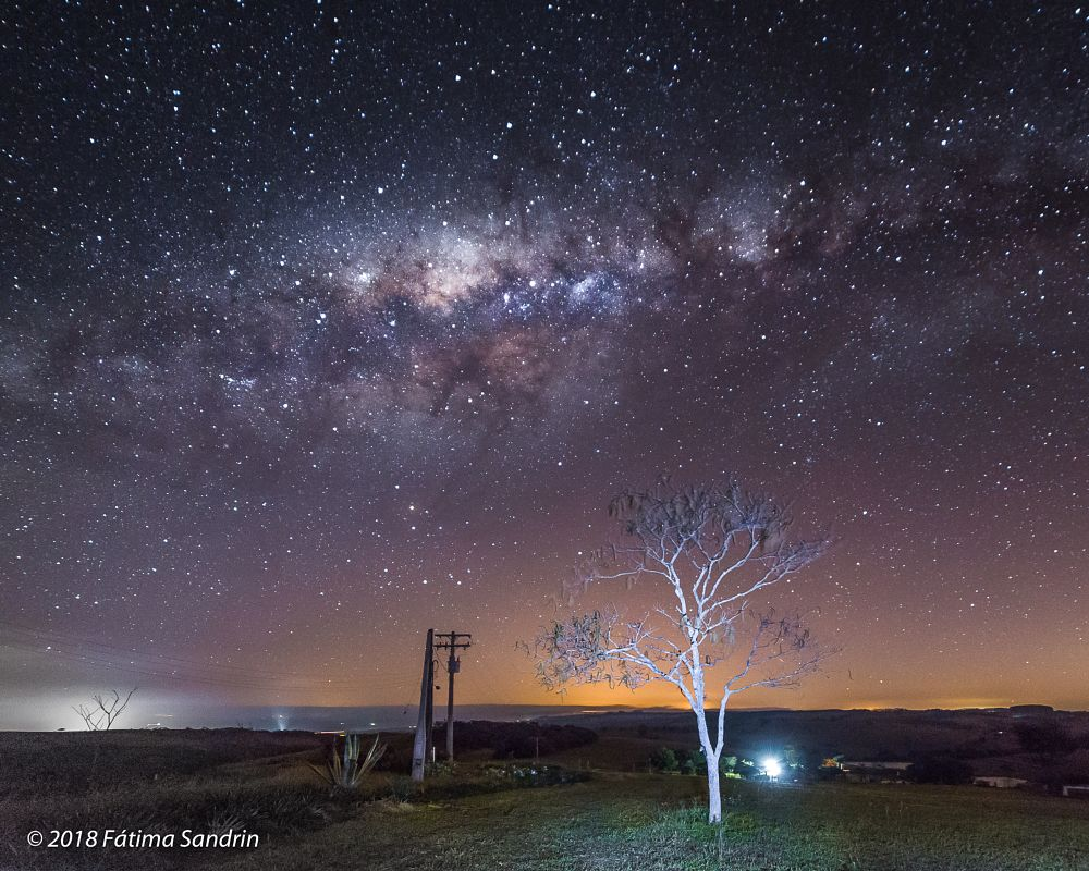 Photo in Random #the milky way #tree #landscape #skyscape #color #astrophotography #ciel #céu #sky #winter #southern hemisphere #long exposition #nighty photography