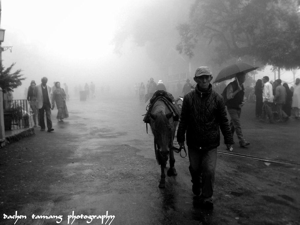 Photo in Abstract #blackandwhite #bestfriends #darjeeling