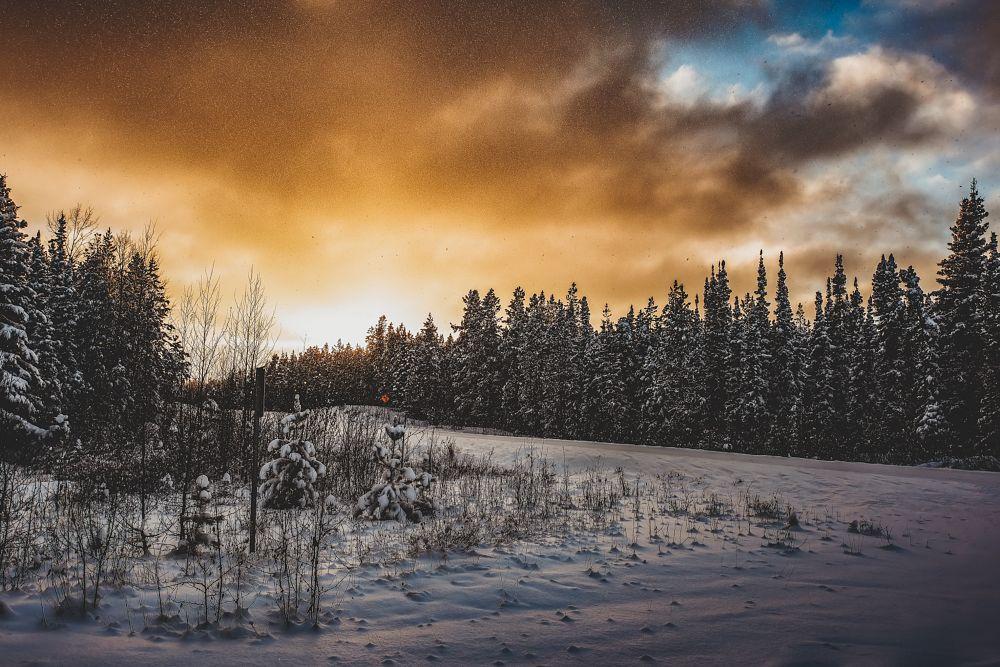 Photo in Random #sunset #golden #skyline #yukon #landscape #winter #nature #naturallycharun #explore #nikon