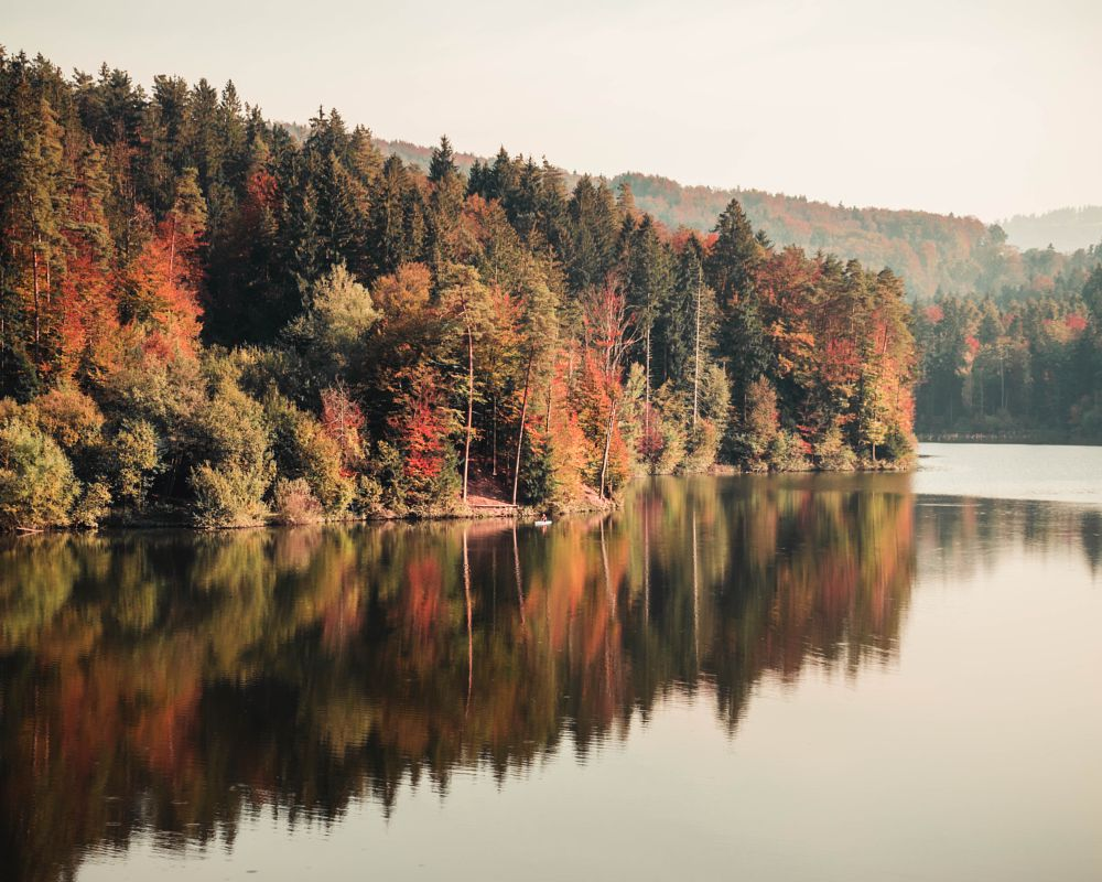 Photo in Random #autumn #fall #mirror #lake #trrees #reflection #landscape #nature #forest #view
