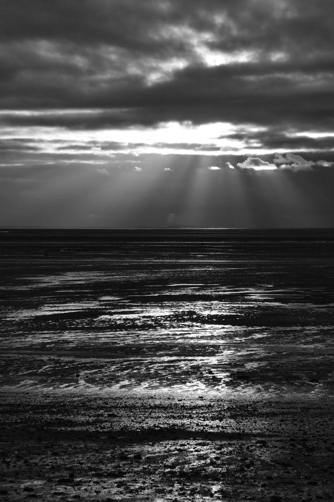 Photo in Black and White #. . . . .  bnwmoodbnw_globe