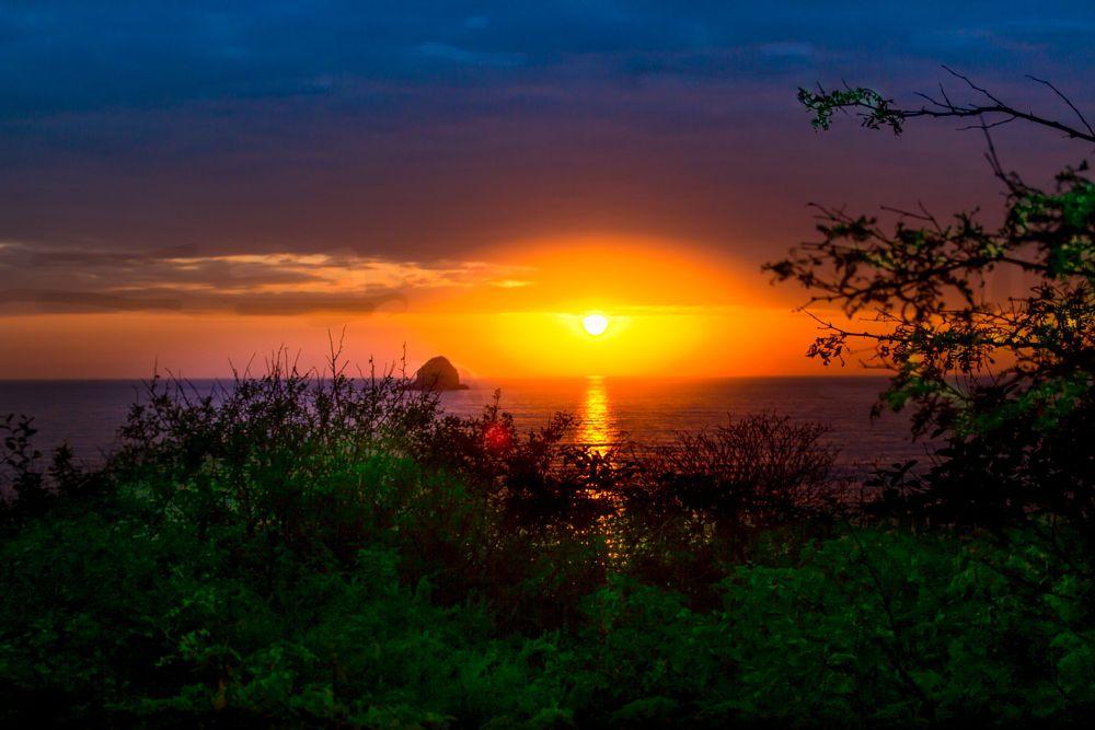 Photo in Random #sunset #sun #yelow