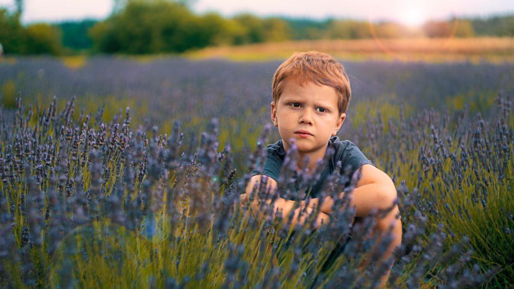 Photo in Portrait #lavender #portrait #nature #outdoor #family #child #kid #son