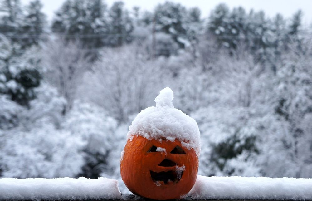 Photo in Random #firstsnow #boo #landscapephotography