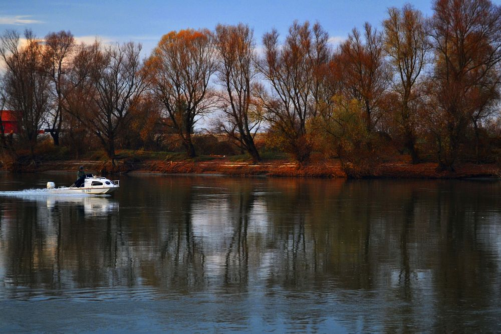 Photo in Landscape #river #drava #osijek #croatia #nature #boat #forest