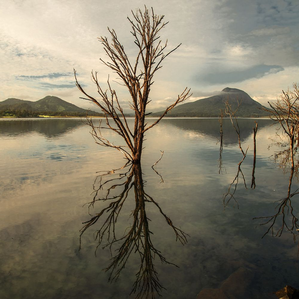 Photo in Landscape #early morning #moogerah dam #australia