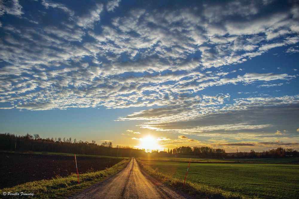 Photo in Random #sunset #road