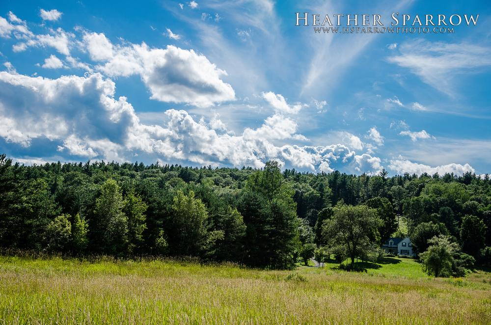 Photo in Landscape #field #clouds #sky #blue #trees