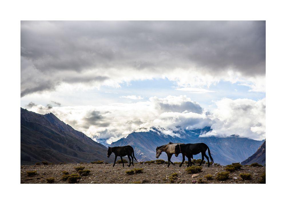 Photo in Travel #himalaya #mountain #travel #nature #india