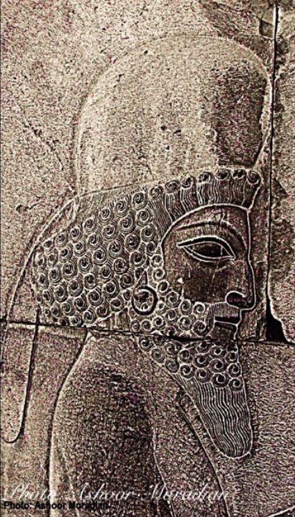 Photo in Travel #perspolis #shiraz #iran #inscription #lumix #national geographic #history