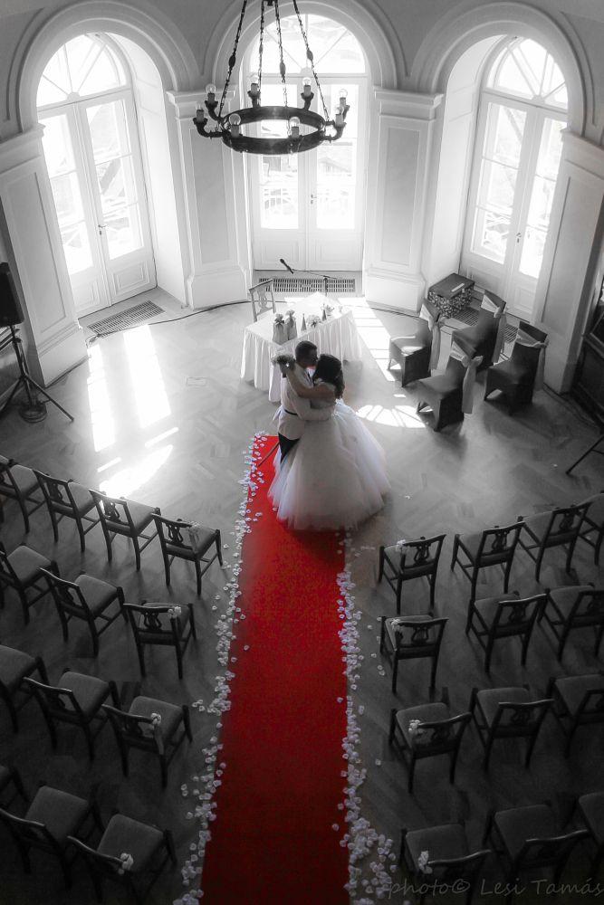 Photo in Wedding #bride #wedding #woman #man #red #black #white #sunshine #rose