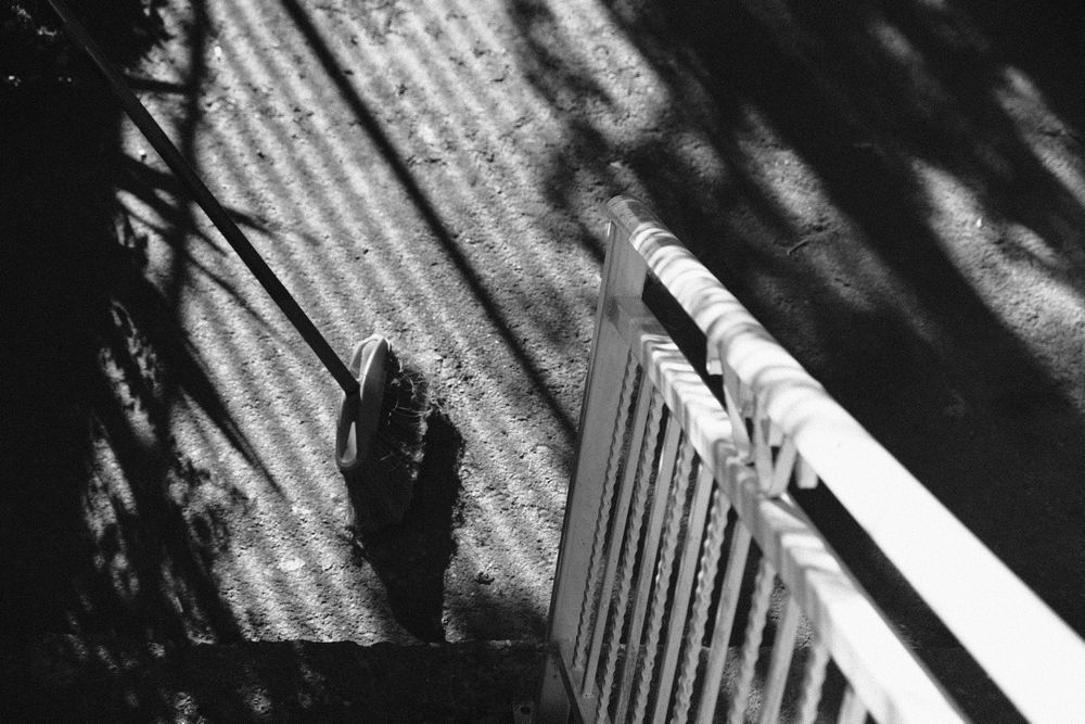 Photo in Black and White #black and white #monochrome #kine #fujifilm #shadow