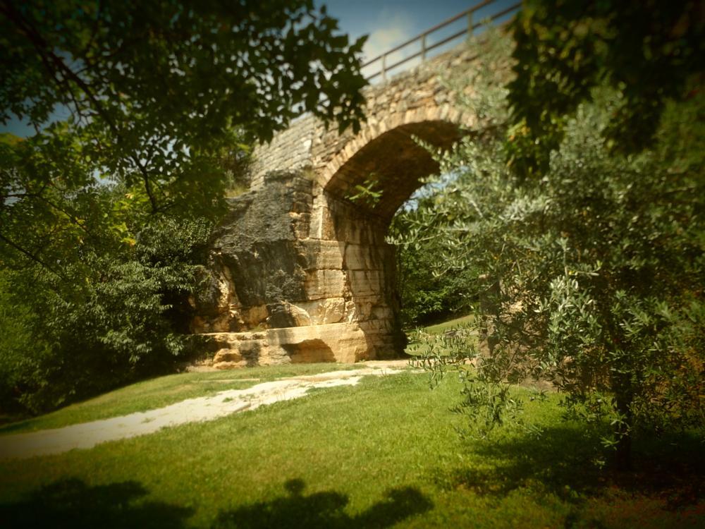 Photo in Landscape #park #trento #summer #bridge