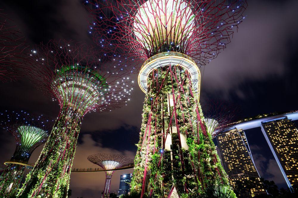 Photo in Travel #supertree #marina bay sands #singapore