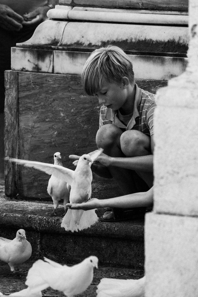 Photo in Random #black white