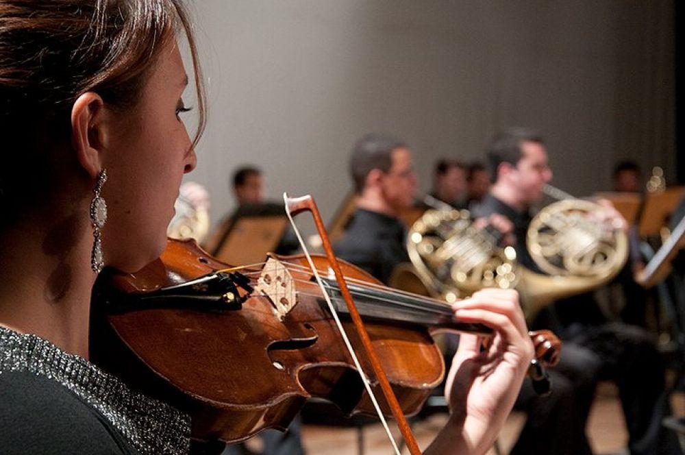 Photo in Random #music #violin