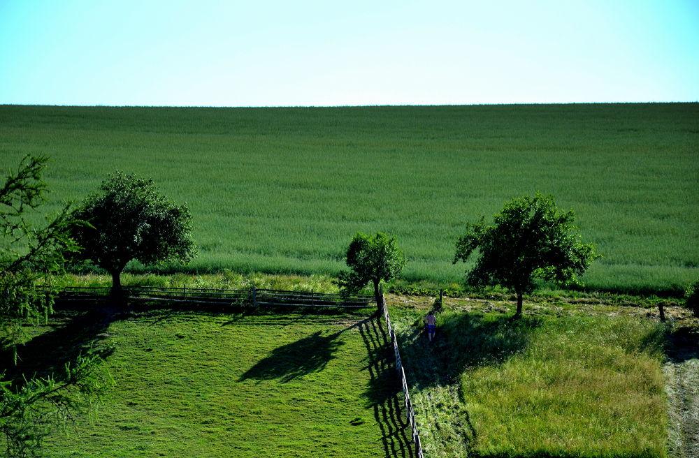 Photo in Fine Art #landscape #fine art #green country