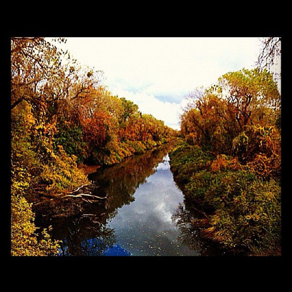 Photo in Random #river #sky #reflection #trees #fall #sacramento