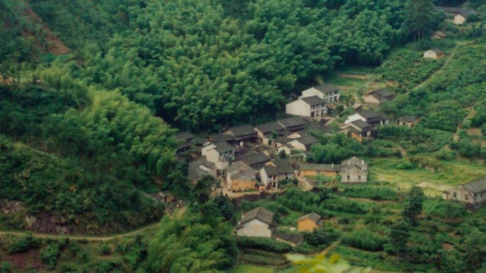 Photo in Random #zhejiang - xikou mountain nurs