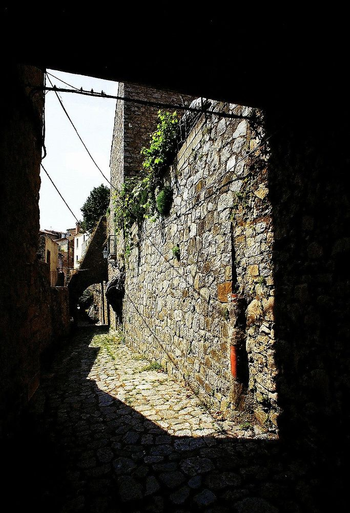 Photo in Random #bassiano