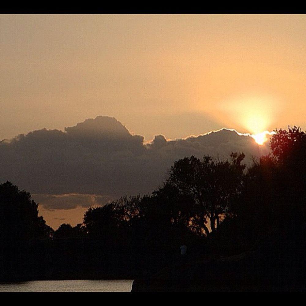 Photo in Random #youpic #river #beautiful #clouds #sky #trees #sun #sacramento #sacramentoriver